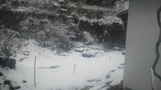 雪の日の薪割り