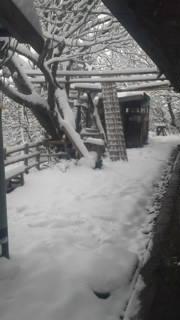 どんぐりやは大雪