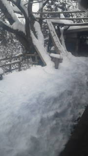 15日の大雪