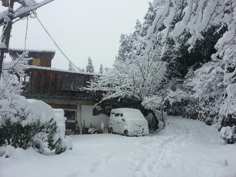 2月19日大雪