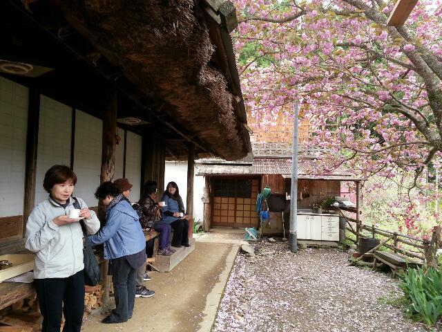 4月20、21日桜祭り