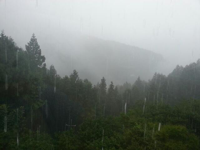 連日大雨です。