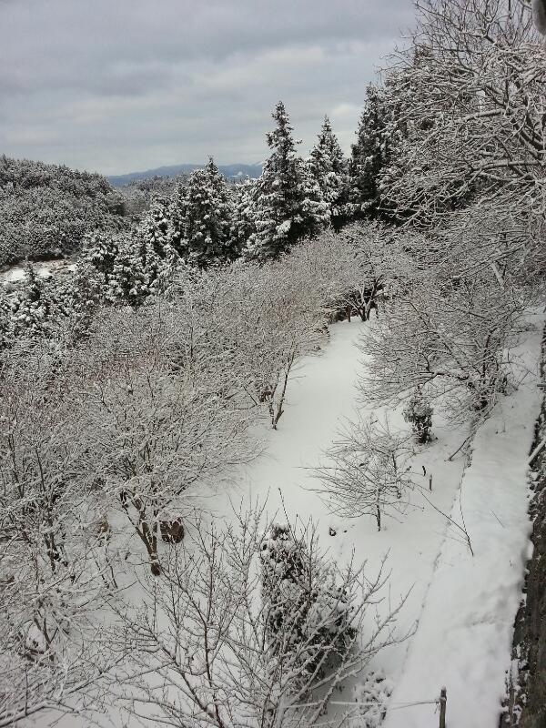積雪30センチ