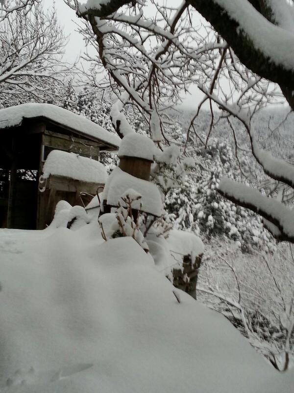 過去最高の積雪
