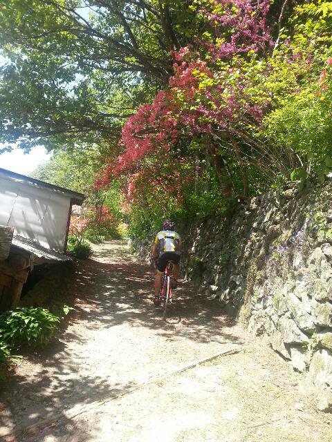 5月7日自転車日和