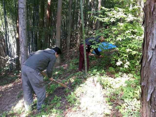 5月18日タケノコ掘り