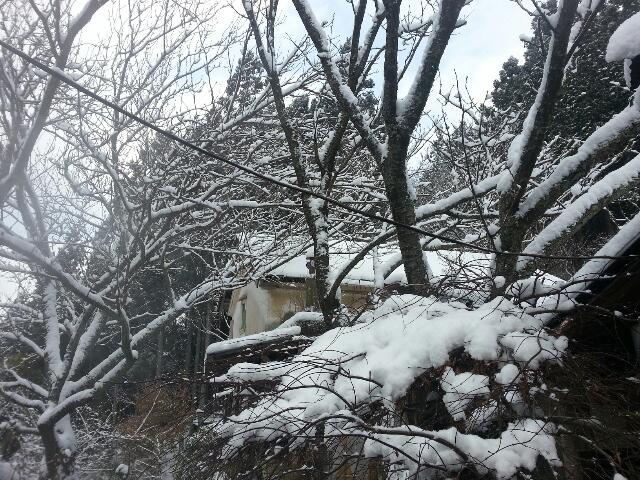 22日また雪~